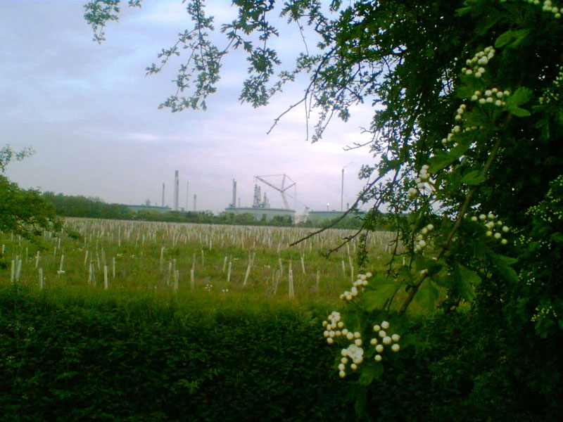 Rural view with Conoco refinery in the distance