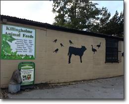 Killingholme Animal Feeds
